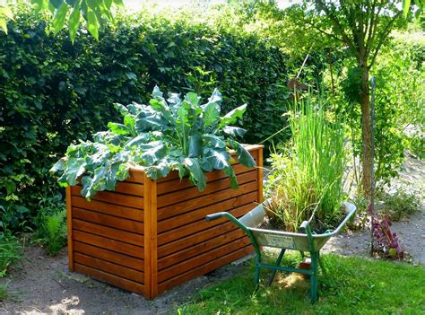 what to plant in raised vegetable garden raised bed gardens and small plot gardening tips the