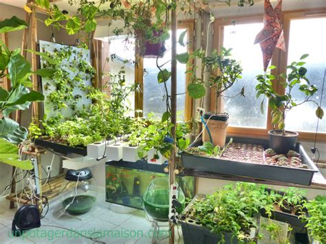 indoor vegetable gardens indoor vegetable garden let s invent a universe together