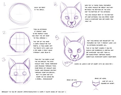 cat tutorial cat tutorial by addictionhalfway on deviantart
