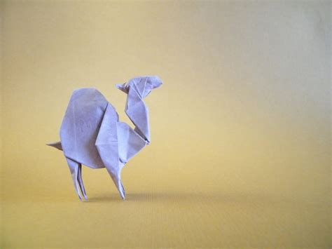 origami camel the world s best photos of camel and origami flickr hive