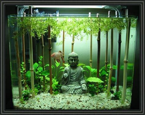 aquarium decoration ideas freshwater 25 best freshwater aquarium ideas on aquarium