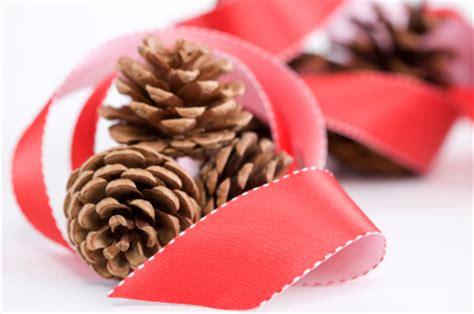how to preserve pinecones how to prepare preserve pine cones tipnut