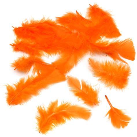 orange craft for orange craft feathers hobbycraft