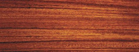 stained woodwork how to stain wood sherwin williams