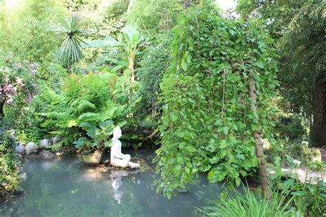 Im Garten Wuchs Der Baum by H 228 Ngender Maulbeerbaum Pendula Lubera De