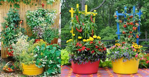 container gardens vegetables 15 stunning container vegetable garden design ideas tips