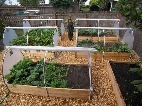 best vegetables for small garden small vegetable garden design garden landscap best small