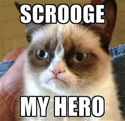 grumpy cat quotes quotesgram
