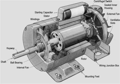 Induction Motor by Types Of Induction Motor Polytechnic Hub