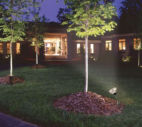 spotlight landscape lighting spotlight landscape lighting landscape lighting ideas
