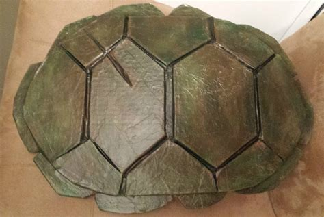 how to make a turtle out of turtle shells on