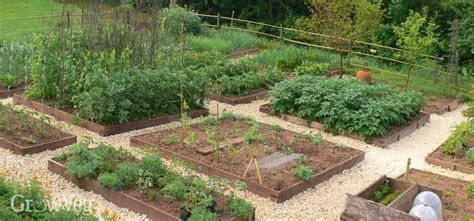 the vegetable garden how to plan a vegetable garden a step by step guide