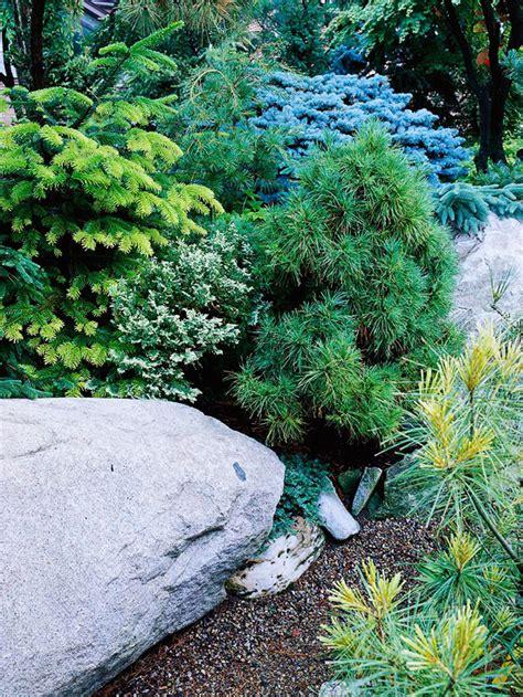 cheap garden rocks creating a rock garden design and planting it ideas for