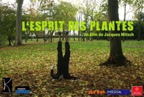 Der Garten Regisseur by Beton Garten Pflanzenfilm