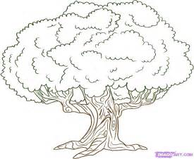 tree color in how to draw an oak tree step by step trees pop culture