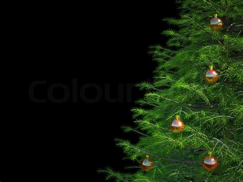 tree on black background tree on a black background stock photo colourbox