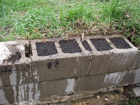cinder block garden wall houseofaura cinder block garden wall how to cinder