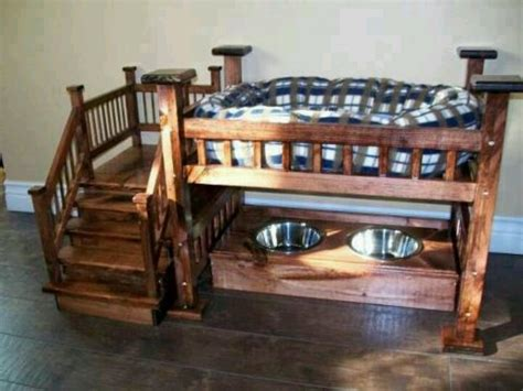 puppy bunk beds bunk bed and feeding station stuff