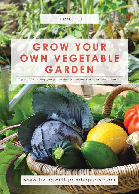growing a vegetable garden for beginners how to grow a vegetable garden gardening for beginners