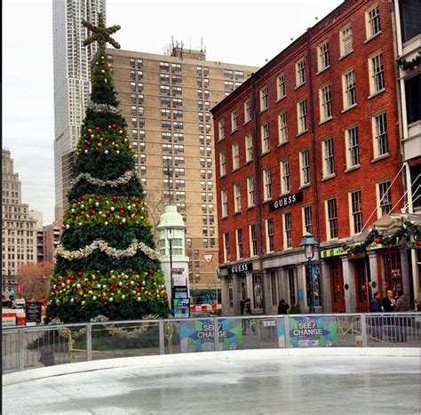 nyc tree manhattan living 183 6 best nyc trees not in