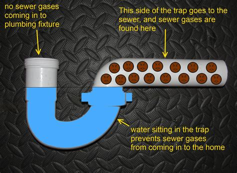 sewer smell coming from kitchen sink the answer to all of your basic plumbing questions