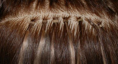 remove micro bead hair extensions orlando s hair extensions experts stella luca