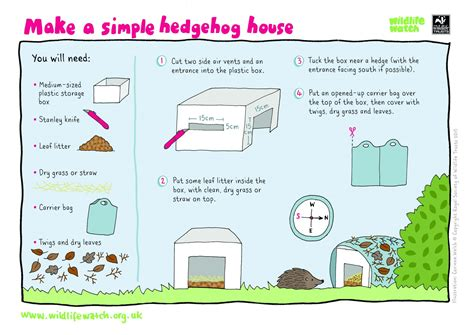 make your house a home help the hog wildlife trust