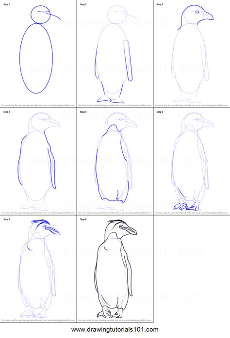step by step how to draw a macaroni penguin printable step by step