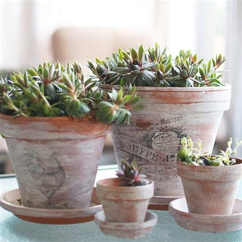 spray painting terracotta pots 17 diy ideas to dress up terra cotta flower pots the