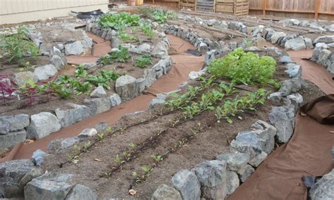 garden bed rocks veggie gardens cascadia edible landscapes