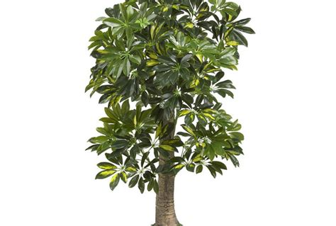 inexpensive white trees artificial find cheap artificial plants fiverr