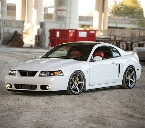 2003 Ford Mustang Cobra by Michael S 2003 Mustang Cobra Customer Mustangs