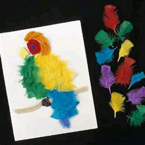 feather crafts for cool feather craft plumes pluimen feathers