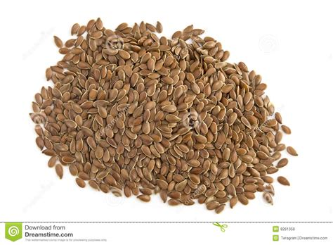 seed wholesale flax seed royalty free stock photos image 8261358