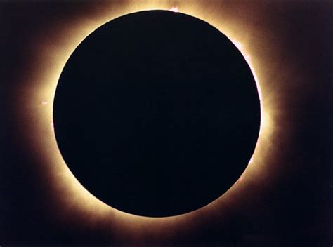 black sun the summer of the black sun edwards