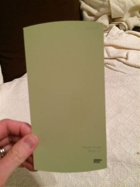 behr paint colors wasabi kitchen wall color behr wasabi powder new house kitchen
