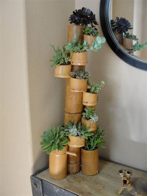 bamboo craft projects bamboo succulent with twelve cups filled with a