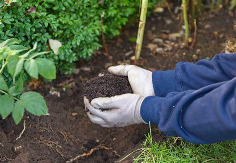 Der Garten Erde by Bodenarten Und Erde Tipps Obi F 252 R Guten Gartenboden