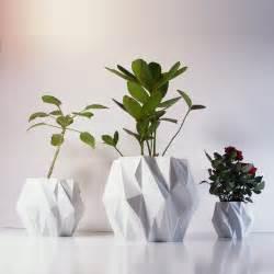 modern plants indoor best modern indoor plants contemporary interior design