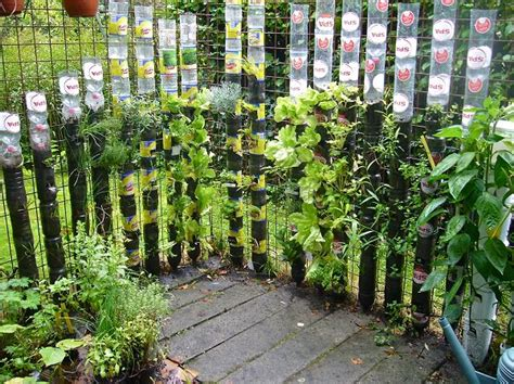when to water vegetable garden 13 plastic bottle vertical garden ideas soda bottle