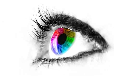 eye designs 30 eye popping web design exles to inspire digital
