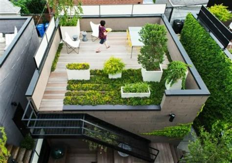 roof gardens all you need to know cape contours