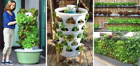garden idea images 20 vertical vegetable garden ideas home design garden