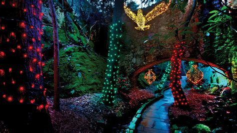 rock city garden of lights best places to visit santa in chattanooga localfare