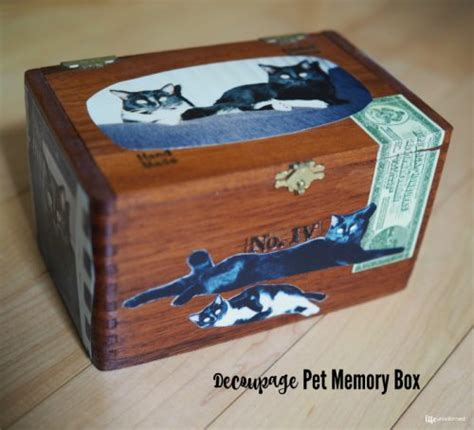 decoupage memory box how to make your own diy pet bowls