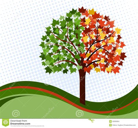 chagne trees changing seasons tree stock images image 32930904