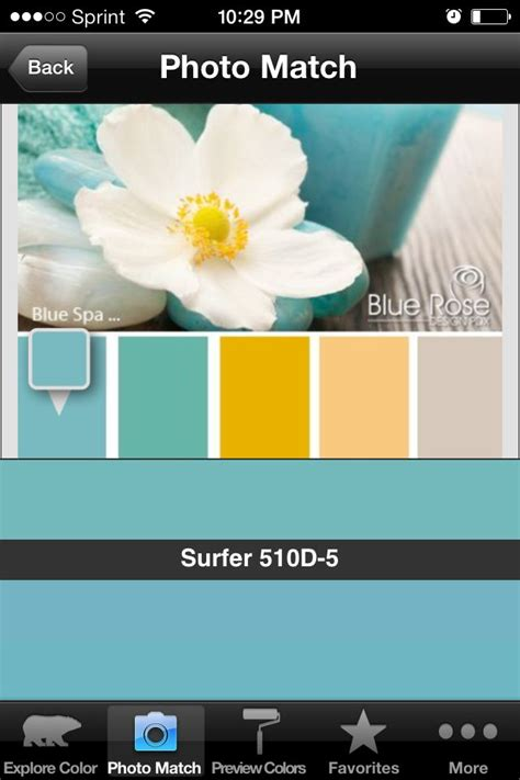 behr paint color jackfruit behr paint color in surfer color to the far right is