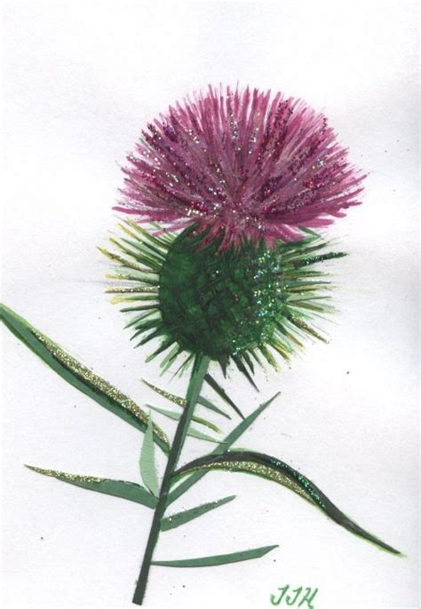 thistle rubber st 17 best images about thistle bluebells on