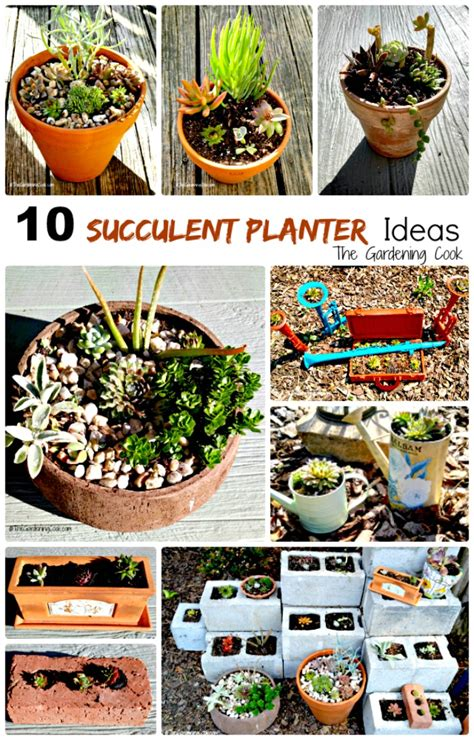 succulent planter ideas rustic succulent planters these plants can really take