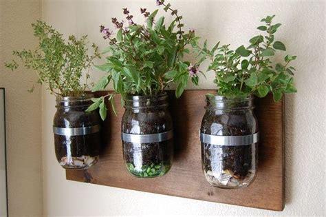 jar herb garden wall rustic herb garden glass jars wall hanging